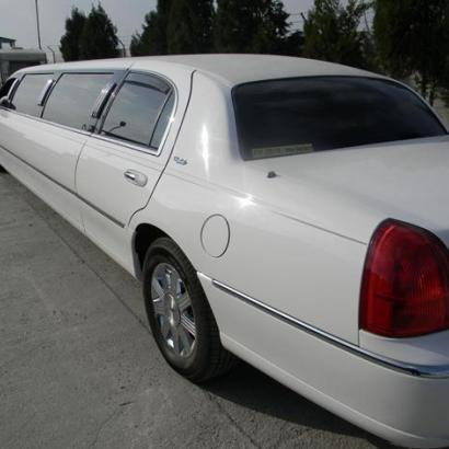 Luxurious limousine in combination with hot stripper, what's better?
